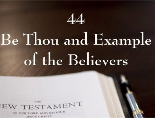 New Testament 44 – Be Thou an Example of the Believers