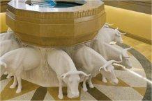 Temple Oxen